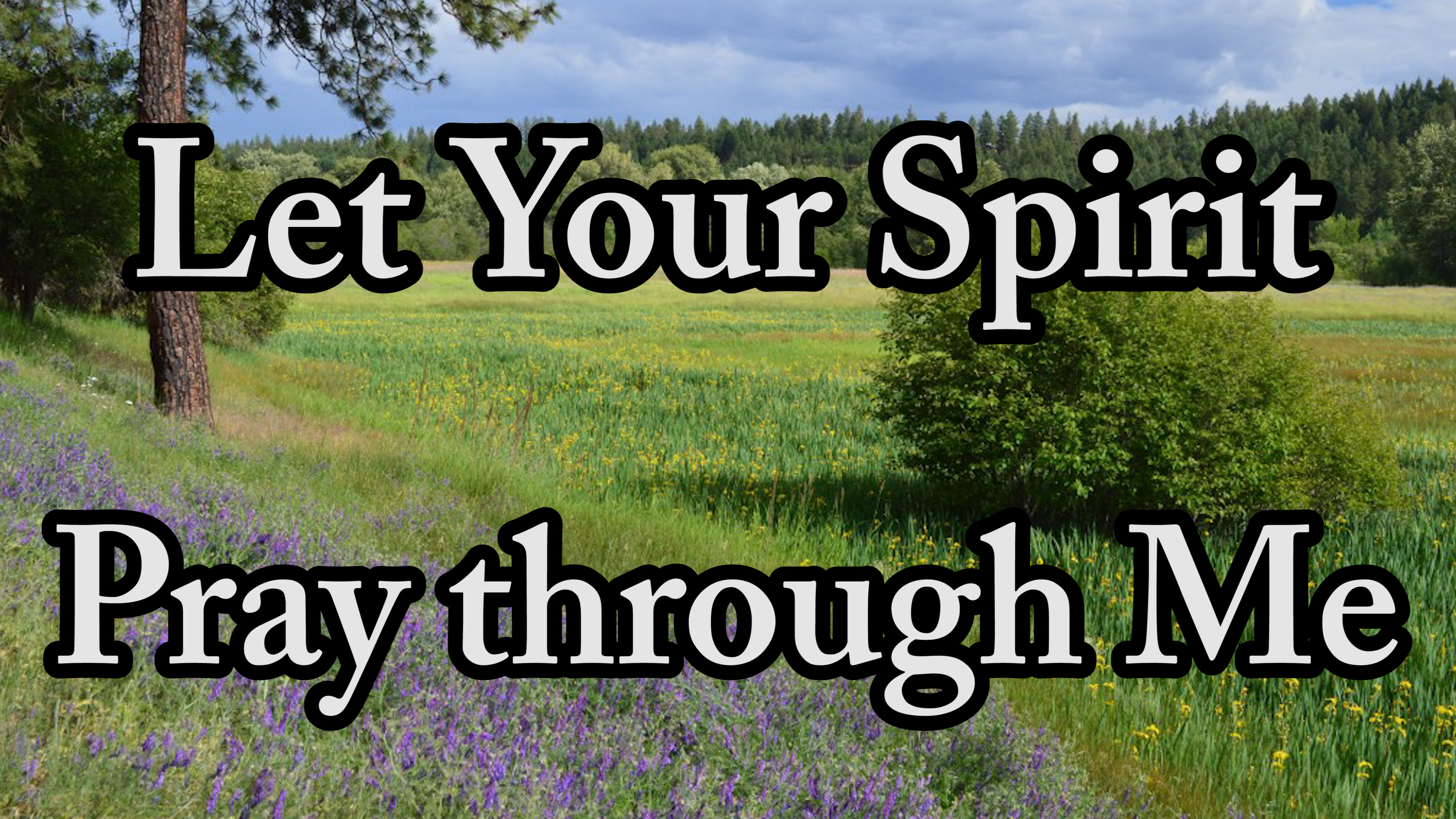 Let Your Spirit Pray through Me